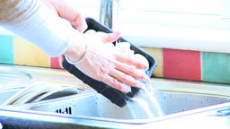 Close up of a woman washing mushrooms Footage