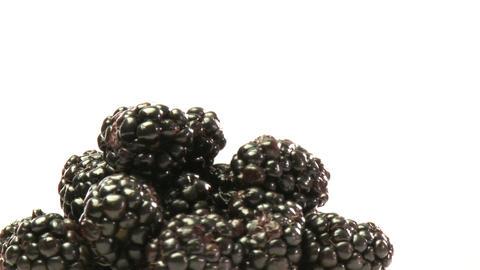 Cluster of blackberries Stock Video Footage