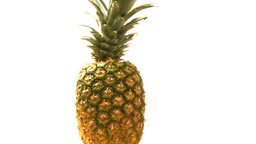 Pineapple Stock Video Footage