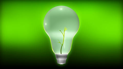 Plant Growing From A Light Bulb stock footage
