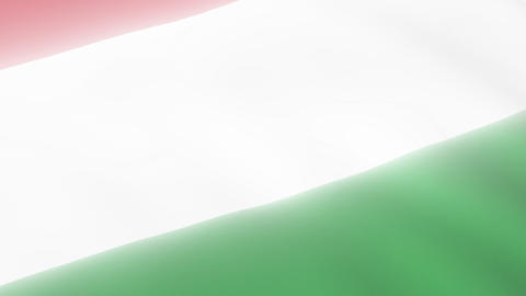 Hungarian Flag Stock Video Footage