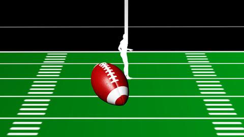 Kicking Field Goal Stock Video Footage