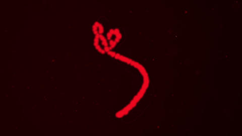 2002 Ebola Virus Animation, HD Footage