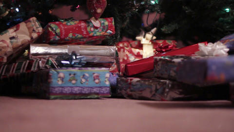 1633 Christmas Presents Under the Tree Live Action