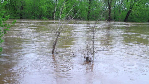 1495 Fast Moving River at Flood Stage Flooding Footage