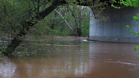 1497 Fast Moving River at Flood Stage Flooding Stock Video Footage