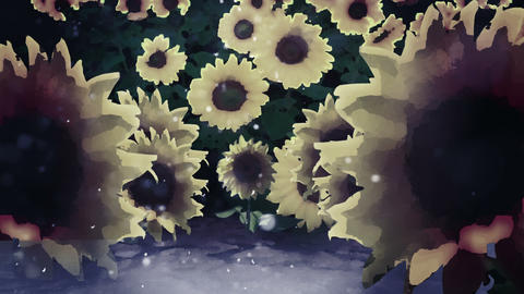Sunflowers At WInter As It Snows, 4K stock footage