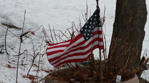 1124 American Flag Blowing in the Ice and Snow by Stock Video Footage