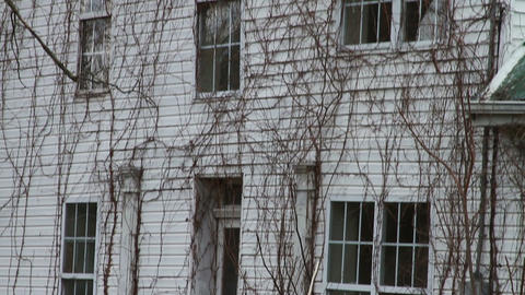 1172 Old Farm House with Old Trees 1 Stock Video Footage