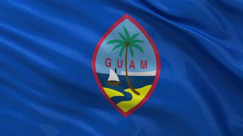 Flag of Guam seamless loop Stock Video Footage