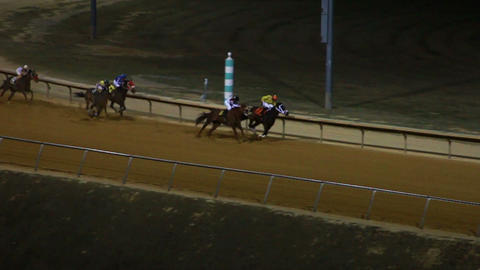 Horses Racing Down the Track in Slow Motion Footage