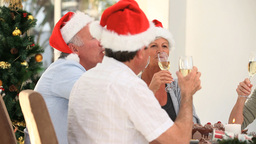 Elderly friends drinking champagne to celebrate Christmas Footage