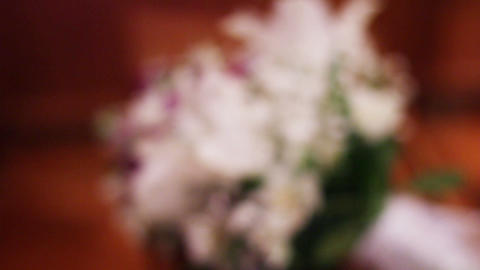 0686 White Flowers Stock Video Footage
