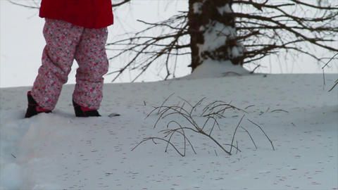 0807 Child Lost in Forest in the Snow Stock Video Footage