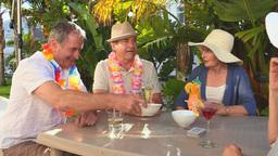 Mature friends during an aperitif Footage