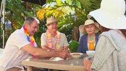 Elderly couples of friends taking an aperitif Footage