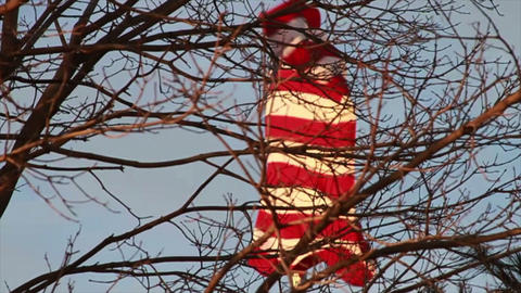 American Flag by Tree, Slow Motion Footage