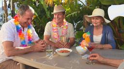 Senior friends taking an aperitif Footage