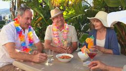 Senior friends taking an aperitif Stock Video Footage