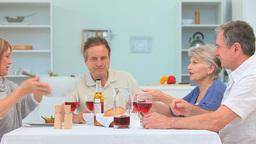 A Lovely Dinner Between Mature Friends stock footage