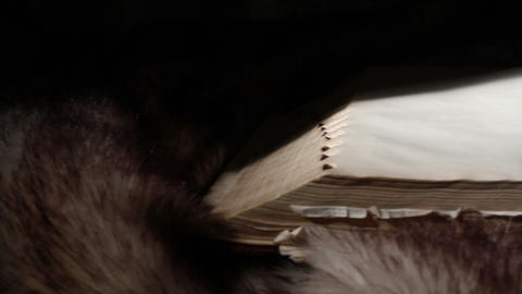 0370 Ancient Giant Book Sitting on Fur Footage