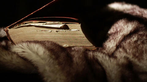 0372 Ancient Giant Book Thrown on Fur Footage