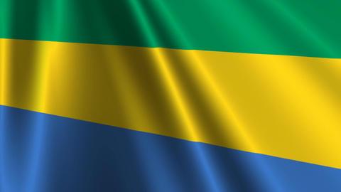 GabonFlagLoop03 Stock Video Footage