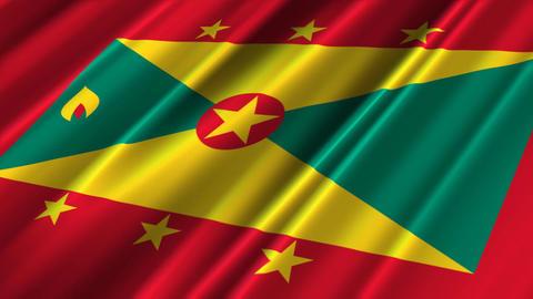 GrenadaFlagLoop02 Stock Video Footage