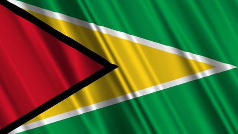 GuyanaFlagLoop01 Stock Video Footage