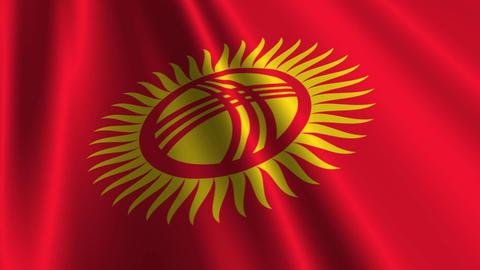 KyrgyzstanFlagLoop03 Stock Video Footage