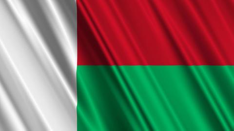 MadagascarFlagLoop01 Stock Video Footage