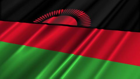 MalawiFlagLoop02 Stock Video Footage
