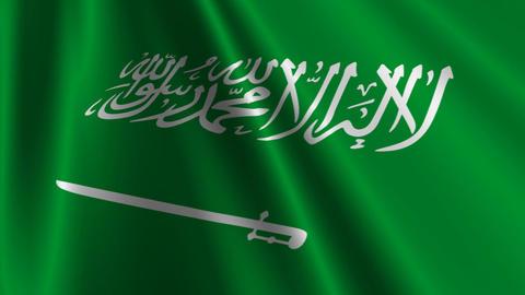 SaudiArabiaFlagLoop03 Stock Video Footage