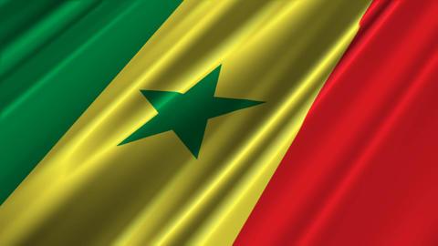 SenegalFlagLoop02 Stock Video Footage