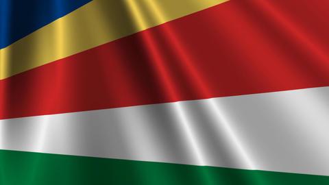 SeychellesFlagLoop03 Stock Video Footage