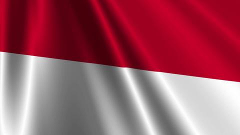 IndonesiaFlagLoop03 Stock Video Footage