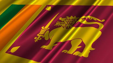 SriLankaFlagLoop02 Stock Video Footage