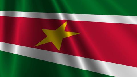 SurinameFlagLoop03 Stock Video Footage
