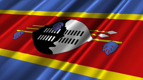 SwazilandFlagLoop02 Stock Video Footage