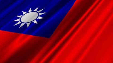 TaiwanFlagLoop02 Stock Video Footage