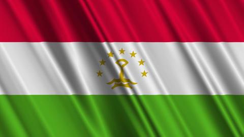 TajikistanFlagLoop01 Stock Video Footage