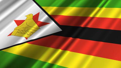 ZimbabweFlagLoop02 Stock Video Footage