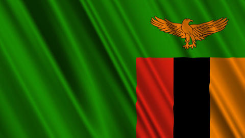 ZambiaFlagLoop01 Stock Video Footage