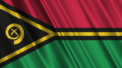VanuatuFlagLoop01 Stock Video Footage
