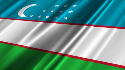UzbekistanFlagLoop02 Animation