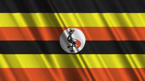 UgandaFlagLoop01 Animation