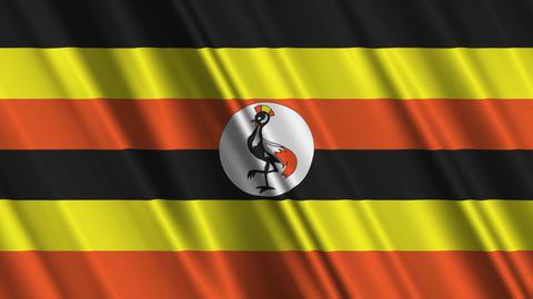 UgandaFlagLoop01 Stock Video Footage