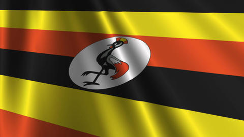 UgandaFlagLoop03 Stock Video Footage