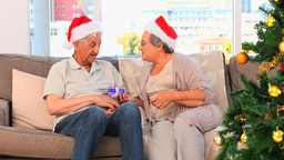 Senior couple during the Christmas day Stock Video Footage