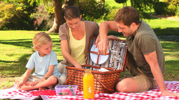 Family preparing to have a picnic Footage